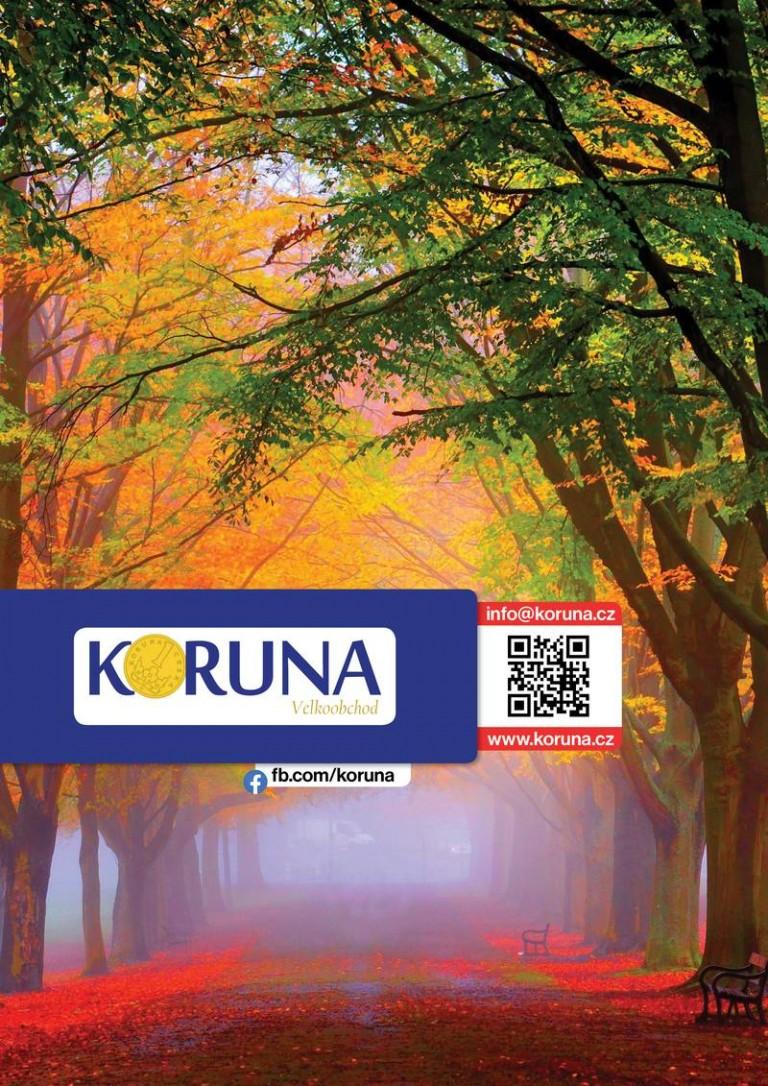 vo-koruna-11-202048